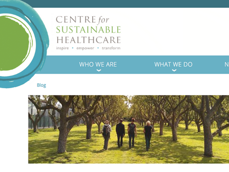 Centre for Sustainable Healthcare blog