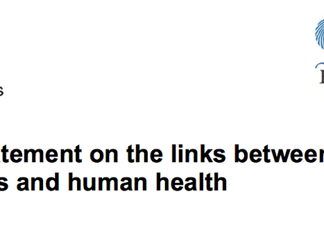 Defra's  Evidence Statement on the links between Natural Environments and Human Health.