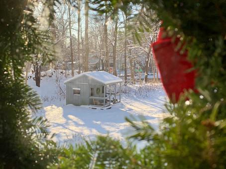 Winter Solstice (12.21.2020)