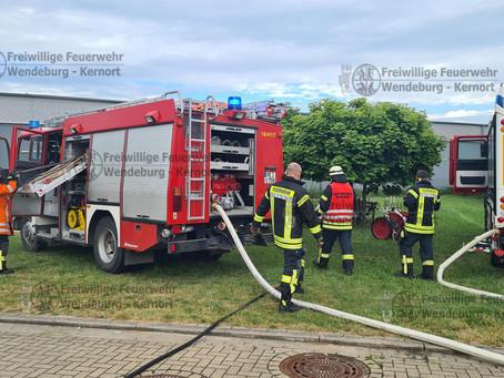 Heckenbrand im Wohngebiet (29.06.2021)