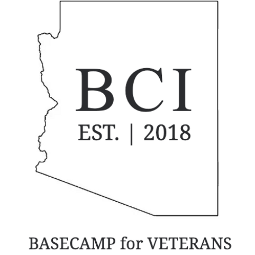 Donating to BCI's Programming