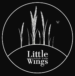 Little wing 2.jpg