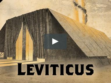 Surviving Leviticus