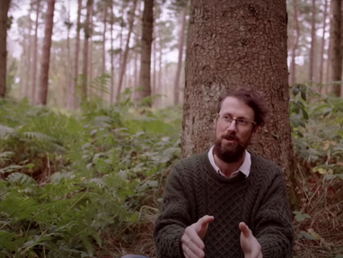 Two Types of Environmentalism—Paul Kingsnorth on limits vs. progress