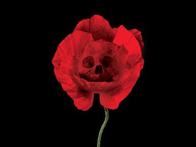 The Poison We Pick—Andrew Sullivan