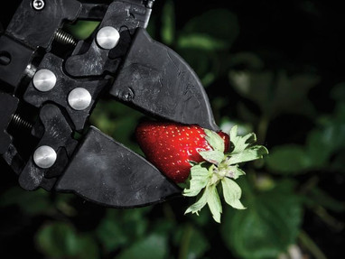 The Age of Robot Farmers—John Seabrook