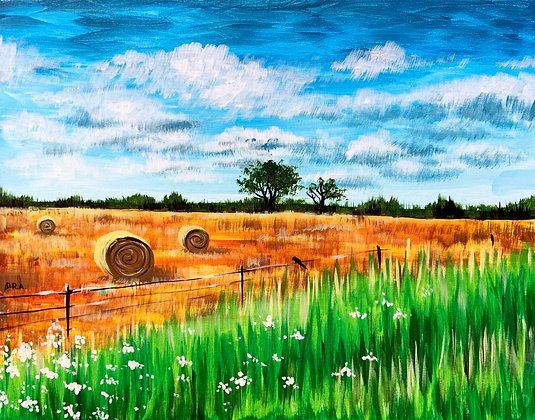 Harvest Time - Video Recording