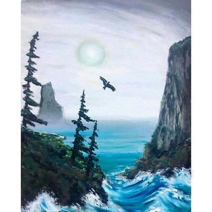 Coastal Cliffs - Video Recording