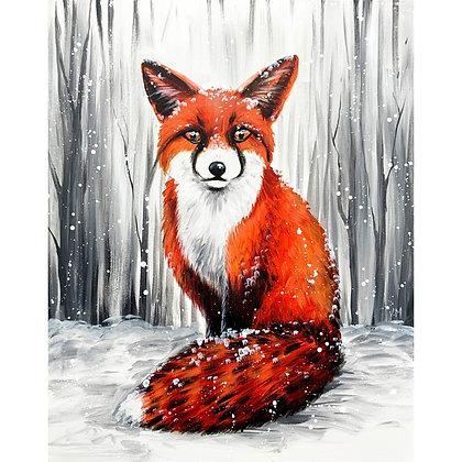Winter Fox - Video Recording