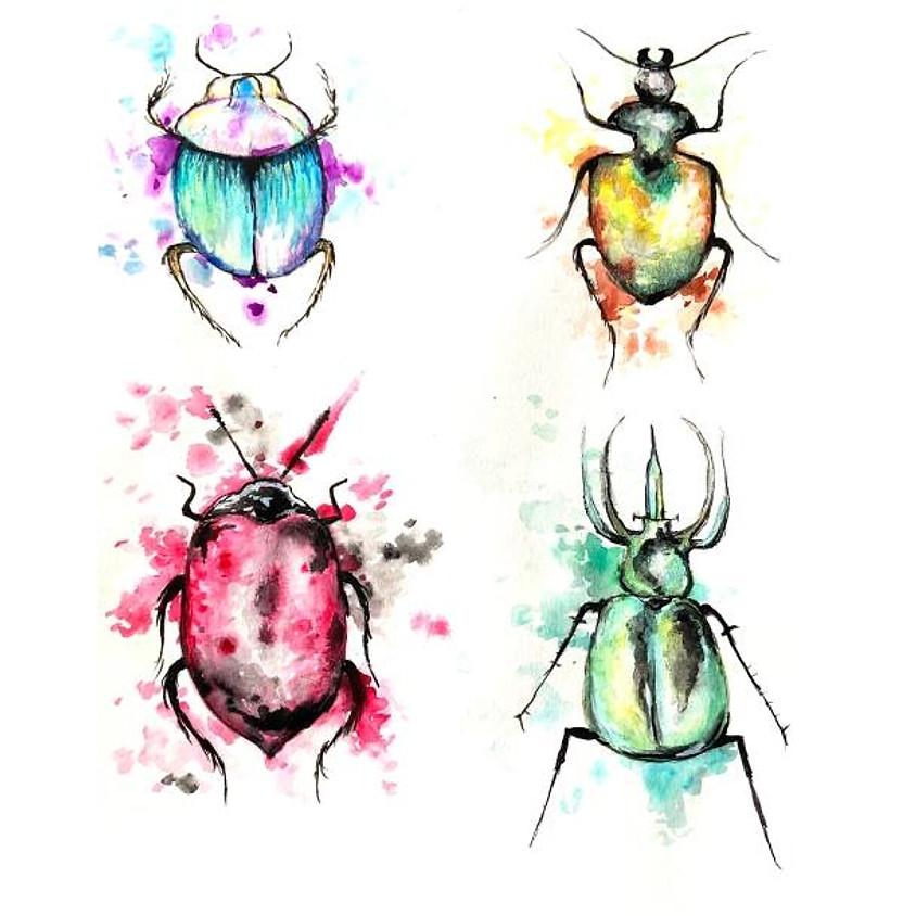 Watercolour Beetles - Nature Week Camp