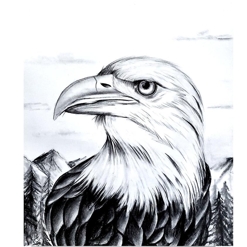 Eagle - HB Pencil Drawing
