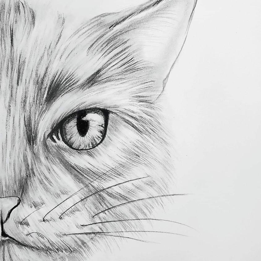 Draw a Realistic Cat - HB Pencil Drawing