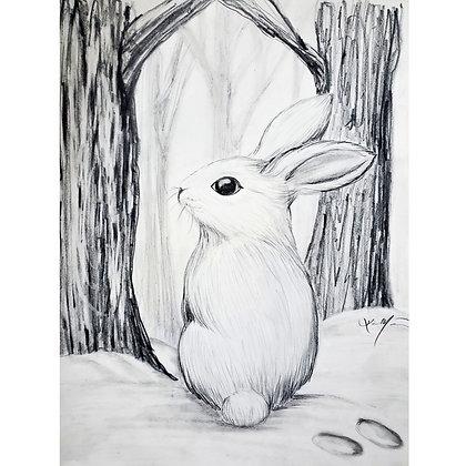 Winter Bunny - HB Pencil Drawing - Video Recording