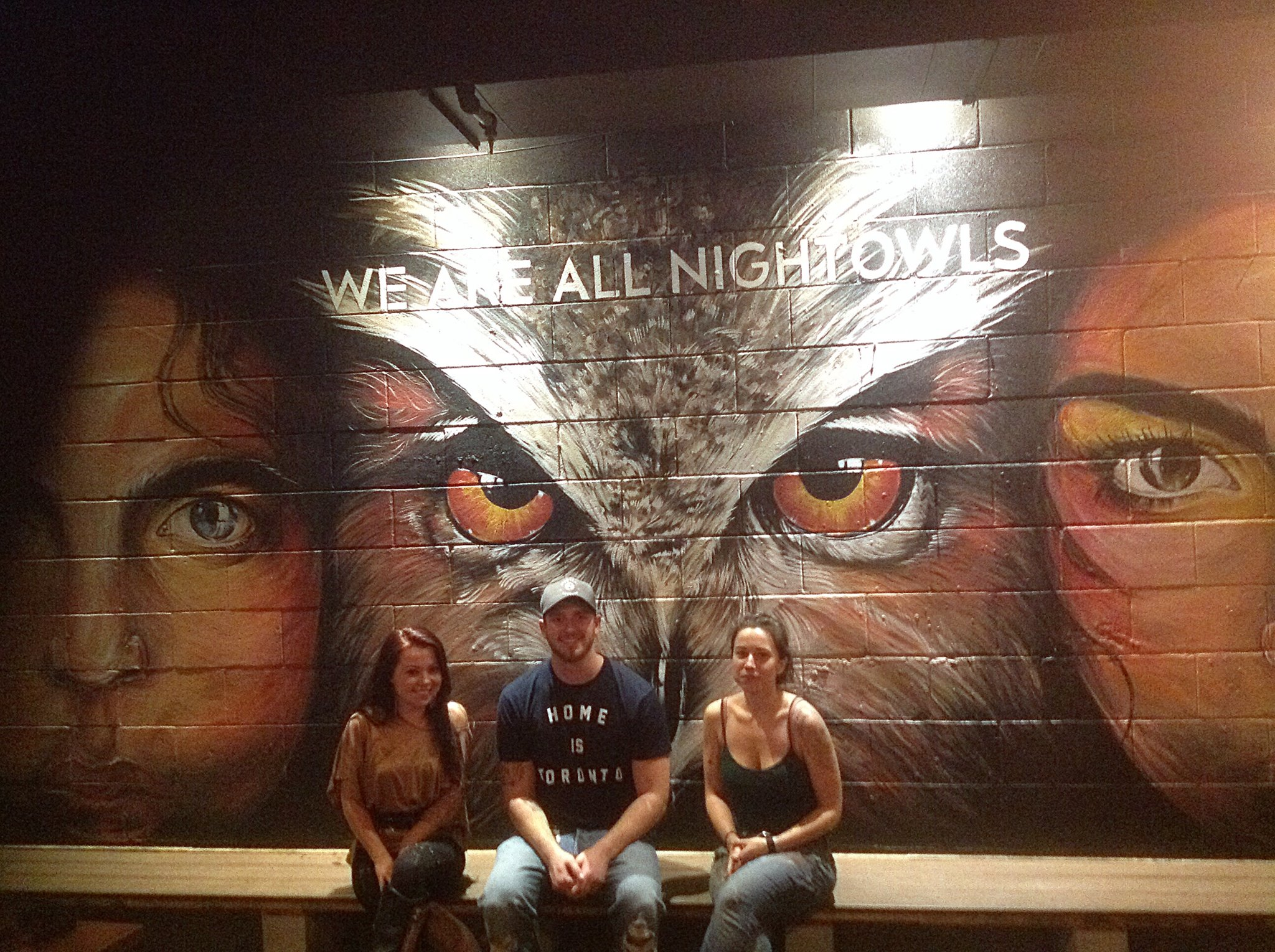 """""""OWL"""" Wall Mural Painting"""