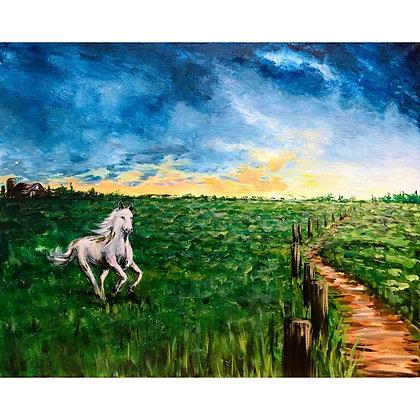 The White Stallion  - Video Recording