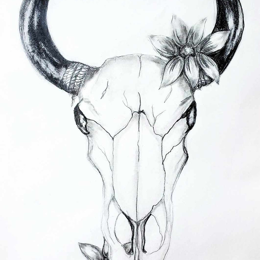 Bulls Skull with Flowers - HB Pencil Drawing