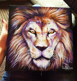 Lion animal portrait