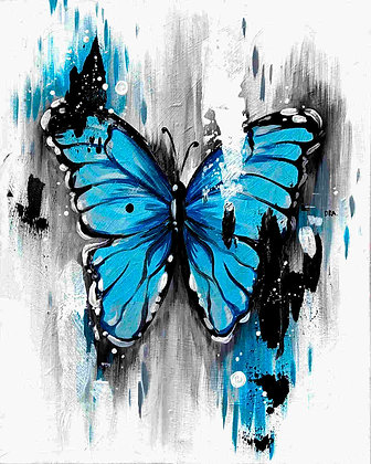 Blue Butterfly - Video Recording