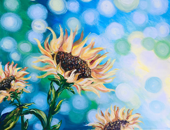 Bokeh Sunflowers - Video Recording