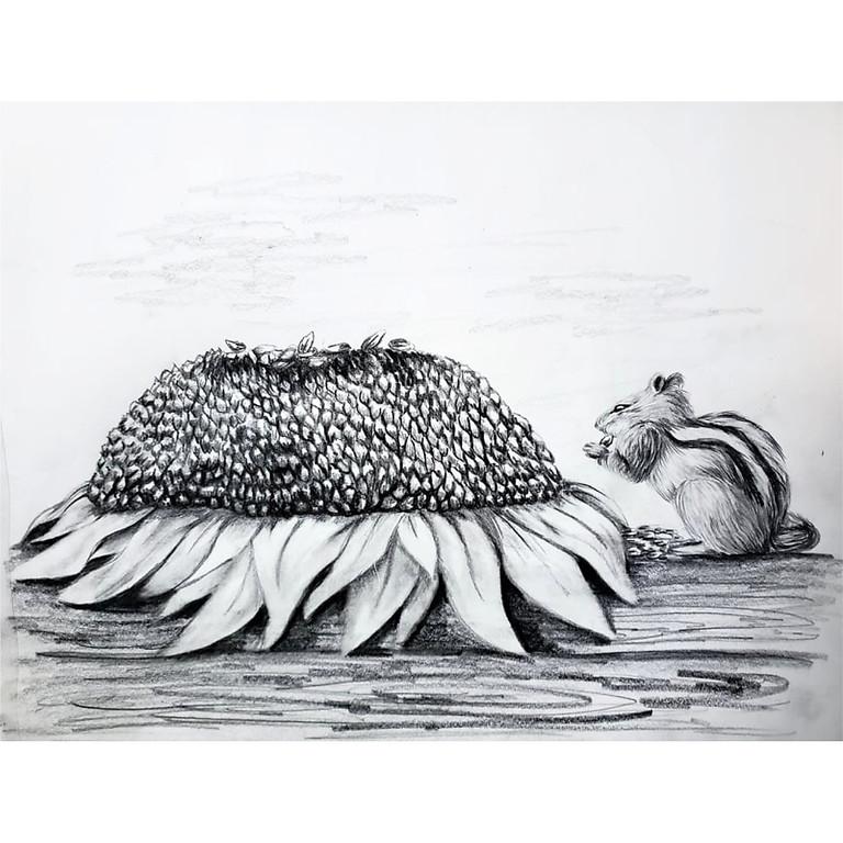 Chipmunk Feast - HB Pencil Drawing
