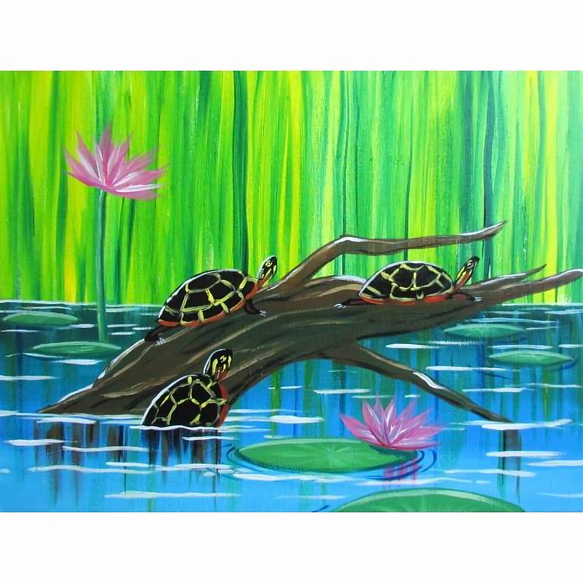 Acrylic Painted Turtles - Nature Week Camp