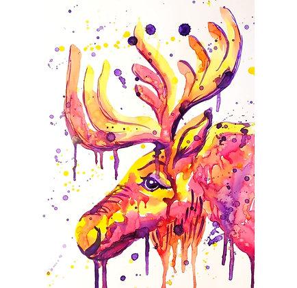 Bold Bull Moose Watercolour - Video Recording