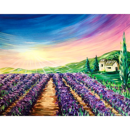 Lavender Field - Video Recording