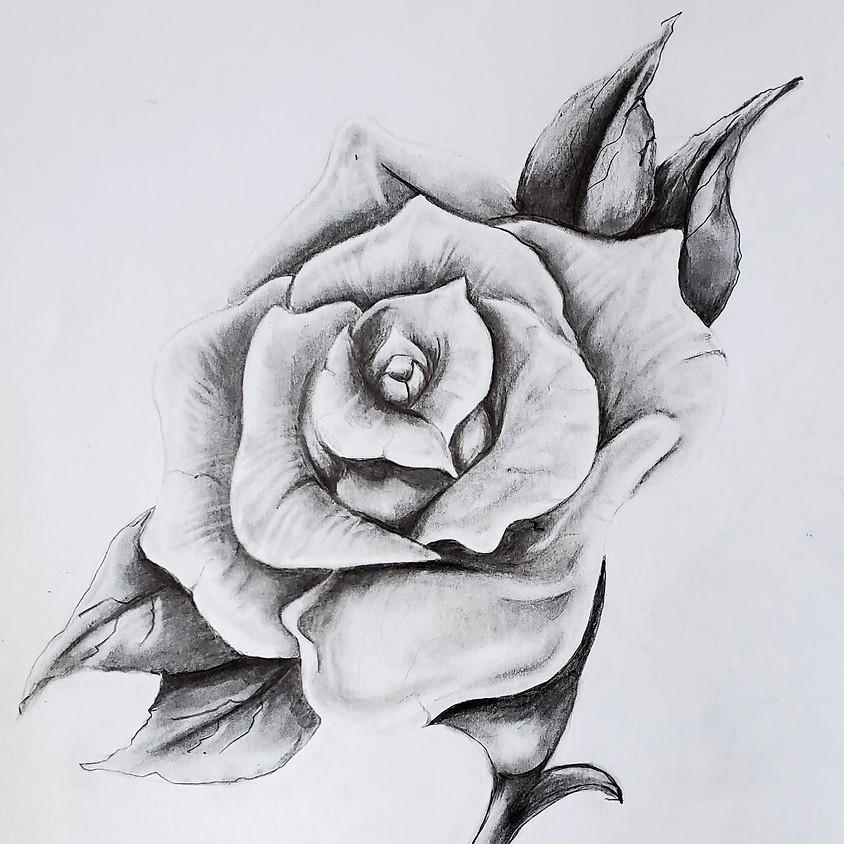 Realistic Rose HB Pencil Drawing