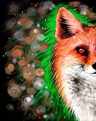 Bokeh Fox - Video Recording