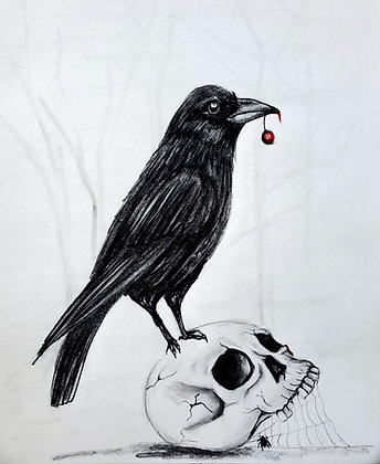 Crow on a Skull Drawing - Video Recording