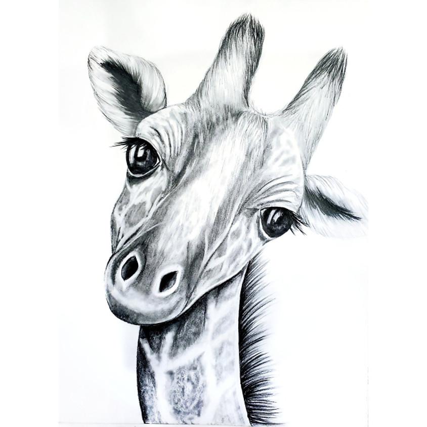 Baby Giraffe - HB Pencil Drawing