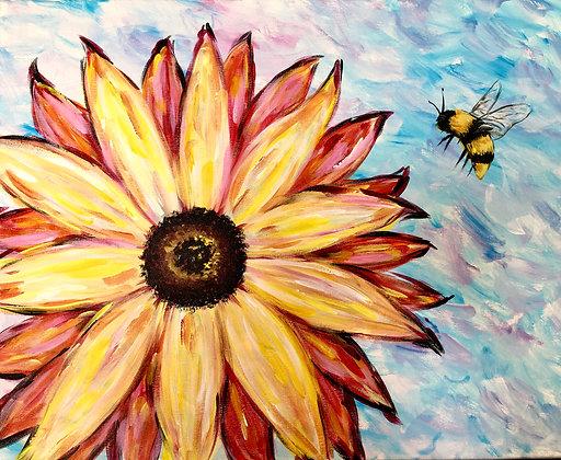 Fiery Sunflower - Video Recording