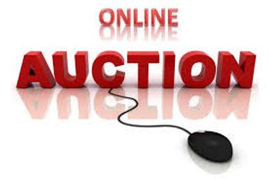 Online Auction.jpeg