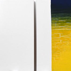"Gianluca Cosci ""Double Negative"" 2018. Oil on canvas. Two elements 80 x 60 cm each."