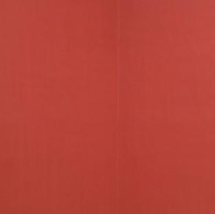 Gianluca Cosci Old Masters # 20 2018 Fujiflex photographic print on aluminium, 67 x 100 cm