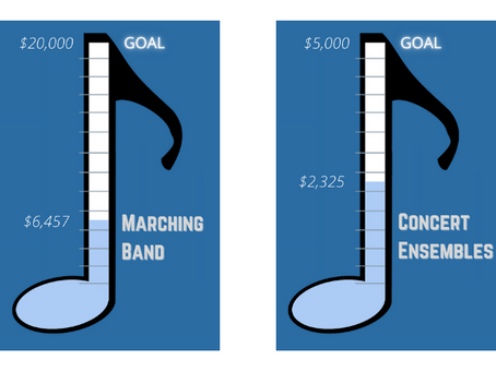 Updated donation progress and targets - Jan. 2021