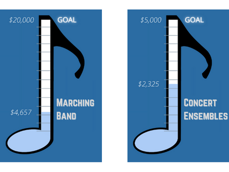 Updated donation progress and targets - Dec. 2020
