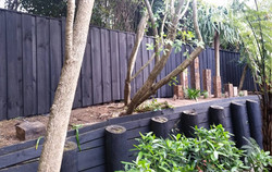Fence Build and Paint