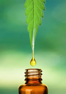 hemp oil leaf.jpg