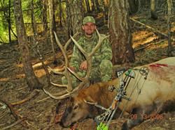 2006-Idaho Bull Elk