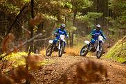 2020-Yamaha-WR250F-EU-Yamaha_Blue-Action