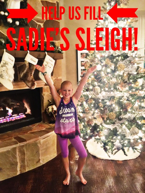 Sadie's Sleigh 8
