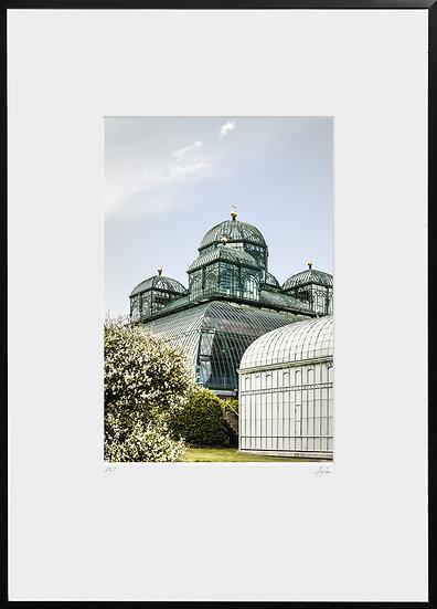 Tirage Photographique - Serres Royales de Laeken - Studio Minh-Son