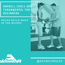 BARBELL CURLS ARE FUNDAMENTAL FOR BEGINN