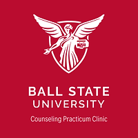 counseling practicum clinic.png