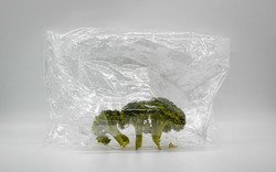 laird_d_broccoli