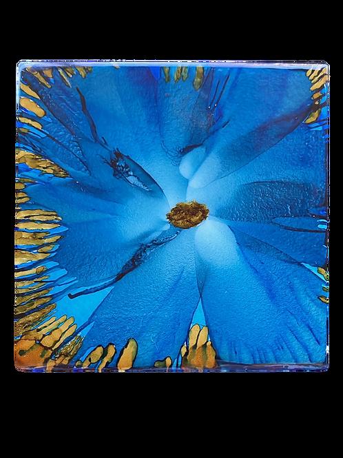 Coaster #48