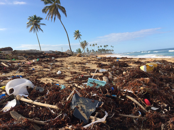 Examining the connection between plastic pollution and climate change..