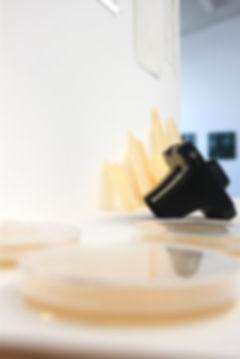 art instillation at Massey University's exposure exhibition 2011