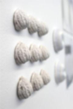 Walnut scultpure instillation at Massey University's Exposure exhibition
